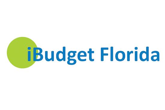 iBudget Logo